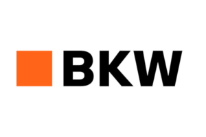 HRweb_Consulting_BKW_logo